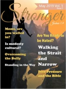 StongerMagVol1Issue2Cover